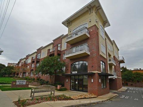 1829 Kenilworth Avenue #303  Charlotte NC 28203