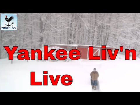 Nor'easter, Blizzard Hit's Yankee Liv'n in Maine Day Two 3/14/18