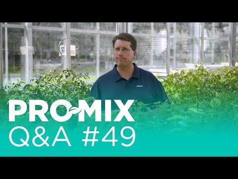 How does lack of sunlight affect growing medium performance?