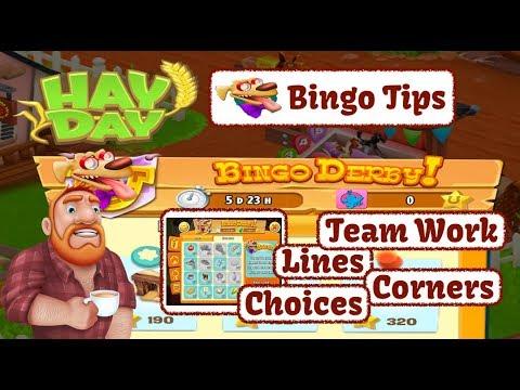 Hay Day - The Bingo Derby