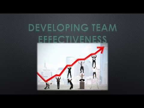 Developing Team Effectiveness