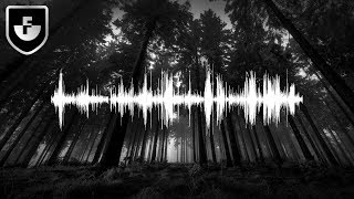 4 Mysterious And Bizarre Audio Recordings