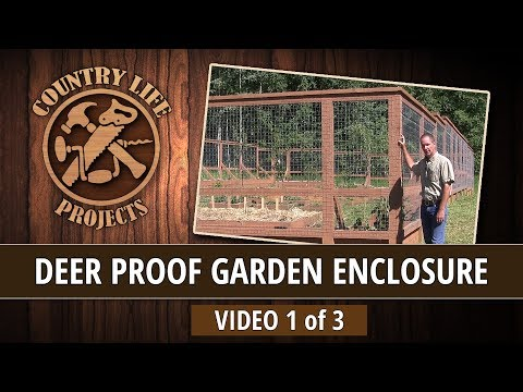 Video 1 of 3 - How To Build a Deer & Bear Proof Garden Fence With Raised Beds - No Digging Required