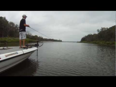How to Catch Bass in the Fall - Crankbait Spinnerbait and Topwater Fall Bass Fishing Tips
