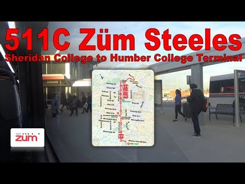 511C Züm Steeles - Züm 2012 New Flyer XDE60 1290 (Sheridan College to Humber College Terminal)