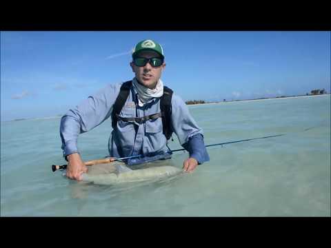 Tips for Success on Christmas Island Bonefish