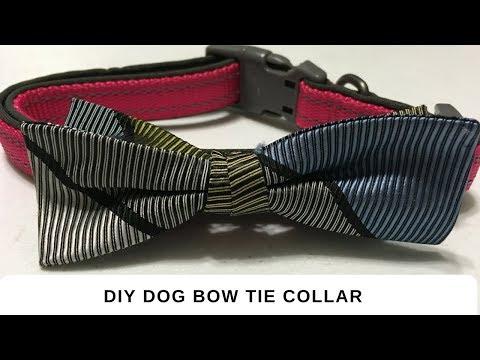 DIY Dog Bow Tie Collar