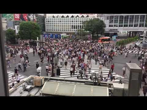 Shibuya crossing timelapse 渋谷区速いビデオ