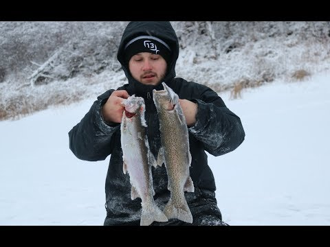 Catching Rainbow Trout & Brook Trout Through the Ice!