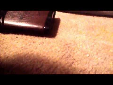 Dylan Sanders video 10
