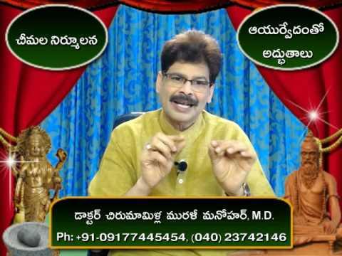 Ant Controlling Home Remedies in Telugu by Dr. Murali Manohar Chirumamilla, M.D. (Ayurveda)