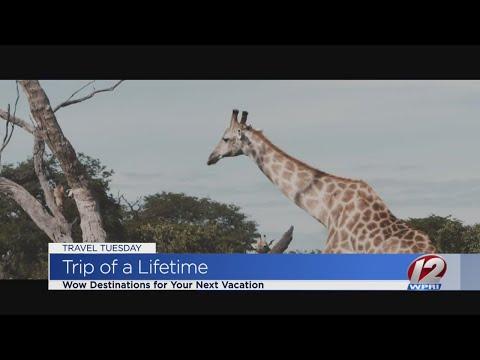 Take a trip of a lifetime
