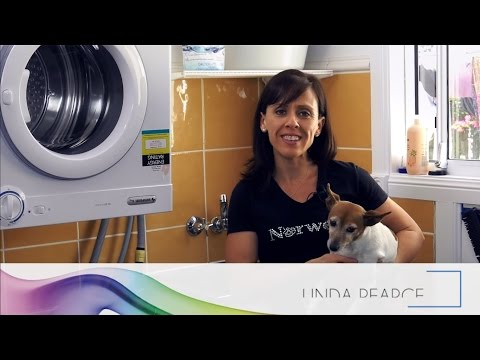 Wash your Pet with Water and Norwex - Cleaning Moments with Linda