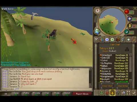 Where to find green and orange geckos on runescape!