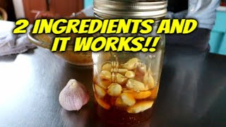 How to make Fermented Honey Garlic - Immune System Booster
