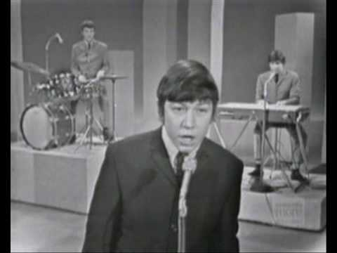 Please Don´t Let Me Be Misunderstood- The Animals