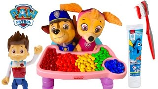 Paw Patrol Skye Chases Baby Puppies Eat Colorful M&M