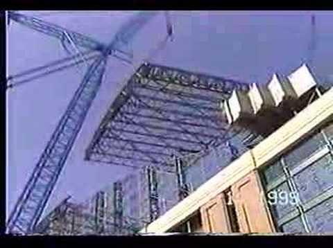 Big Blue Crane