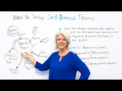 How to Setup Self Directed Teams - Project Management Training