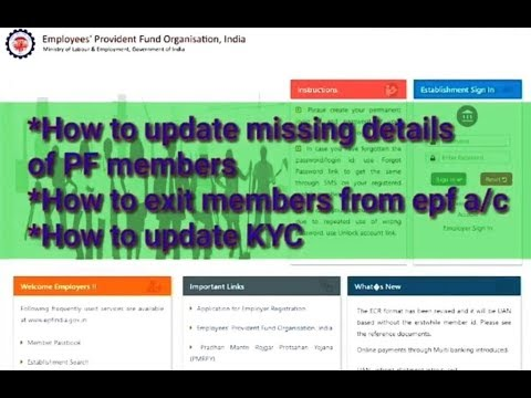 How to update PF member's missing detail