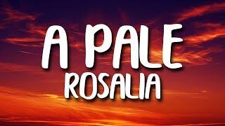 ROSALÍA - A Palé (Letra)