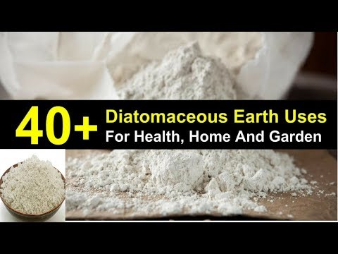 Diatomaceous Earth – Mother Nature's Secret Weapon What Is It, How to Use It, Where to Find It.