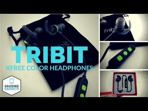 Tribit XFree Color Headphones Review - Bluetooth Magnetic Earbuds