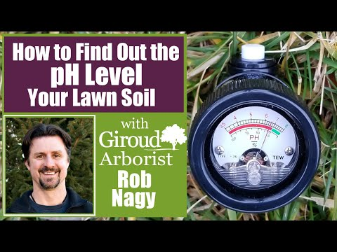 Lawn Soil pH Test