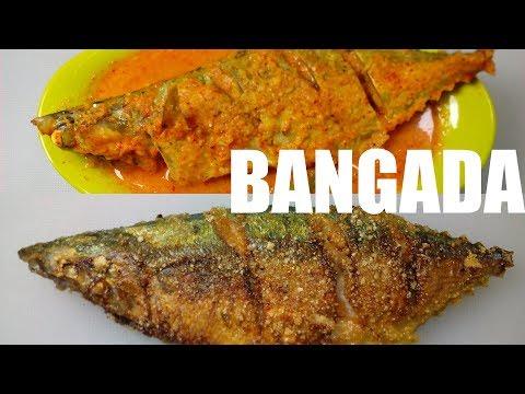 BANGADA FRY & BANGADA CURRY | मराठी | MACKEREL CURRY MACKEREL FRY RECIPES | FISH FRY CURRY