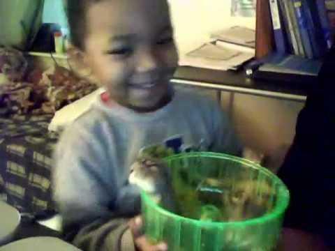 Philadelphia Adoption Court Roberta Trombetta Culpable in DHS Kids for Cash Sales