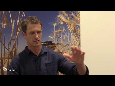 Sam Trengove talks amelioration techniques that 'pay their way', at Adelaide GRDC Update