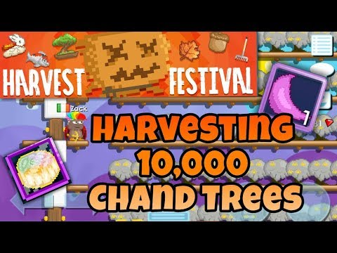 Harvesting 10,000 Chandelier Trees ( Harvest Festival ) | Growtopia