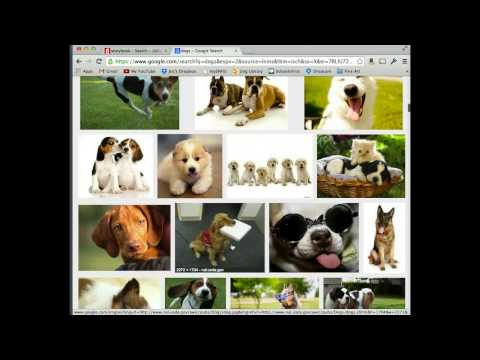 Google Image Search & Image Resolution