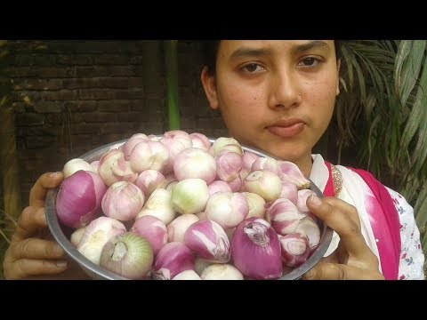Onion Chutney Recipe | How to Cook Onion  | Tasty and Yummy Cooking By Street Village Food