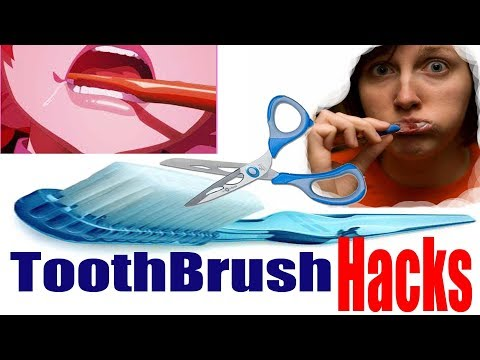 How to: Brush Your Wisdom Teeth - DIY