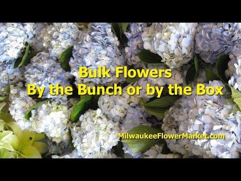 MilwaukeeFlowerMarket.com | Wholesale Flowers | Bulk Flowers