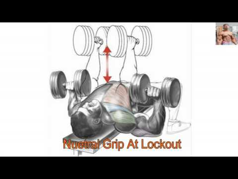 chest workouts Anatomy 13 Exercises That Building your chest Muscle