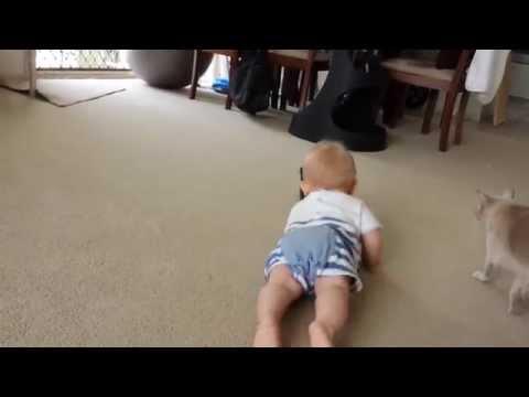 Teaching baby to crawl