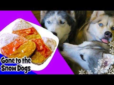 DIY CANDY CORN DOG TREATS   Snacks with the Snow Dogs 38   Halloween Dog Treats