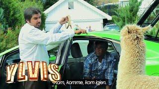 I kveld med Ylvis - David tar Åke med på taxitur