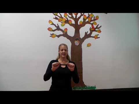 ASL for Babies Lesson 13 Bath Time: Diaper, Dirty, Clean, Change, Poop and Bath