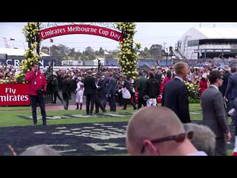 James Boag's Premium Melbourne Cup Carnival - Race Day Wrap Up