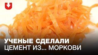 «Умный цемент» из моркови