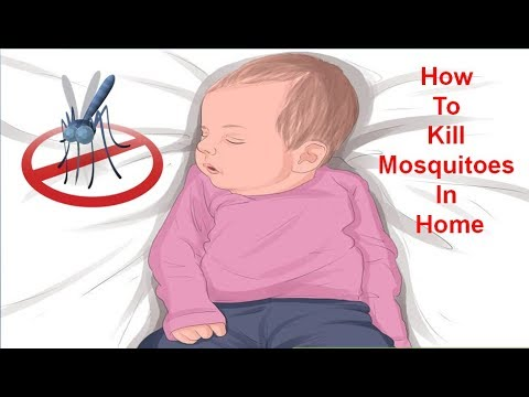 Home Made Recipes How to Kill Mosquitoes in Home   Natural Treatment & Home Remedies