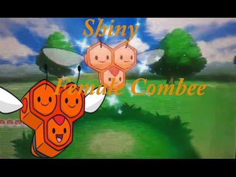 Pokemon Omega Ruby#12: Shiny female combee