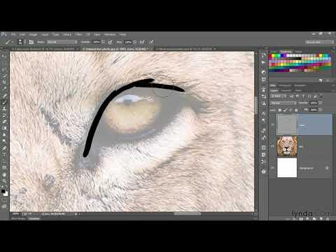 Photoshop tutorial:  Hand-painting an image with a Wacom Cintiq | lynda.com