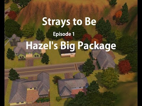 Sims 3 - Strays to Be - Ep 1
