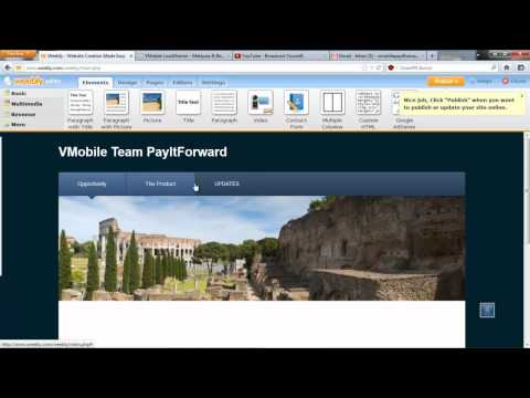How to make a professional website with weebly -