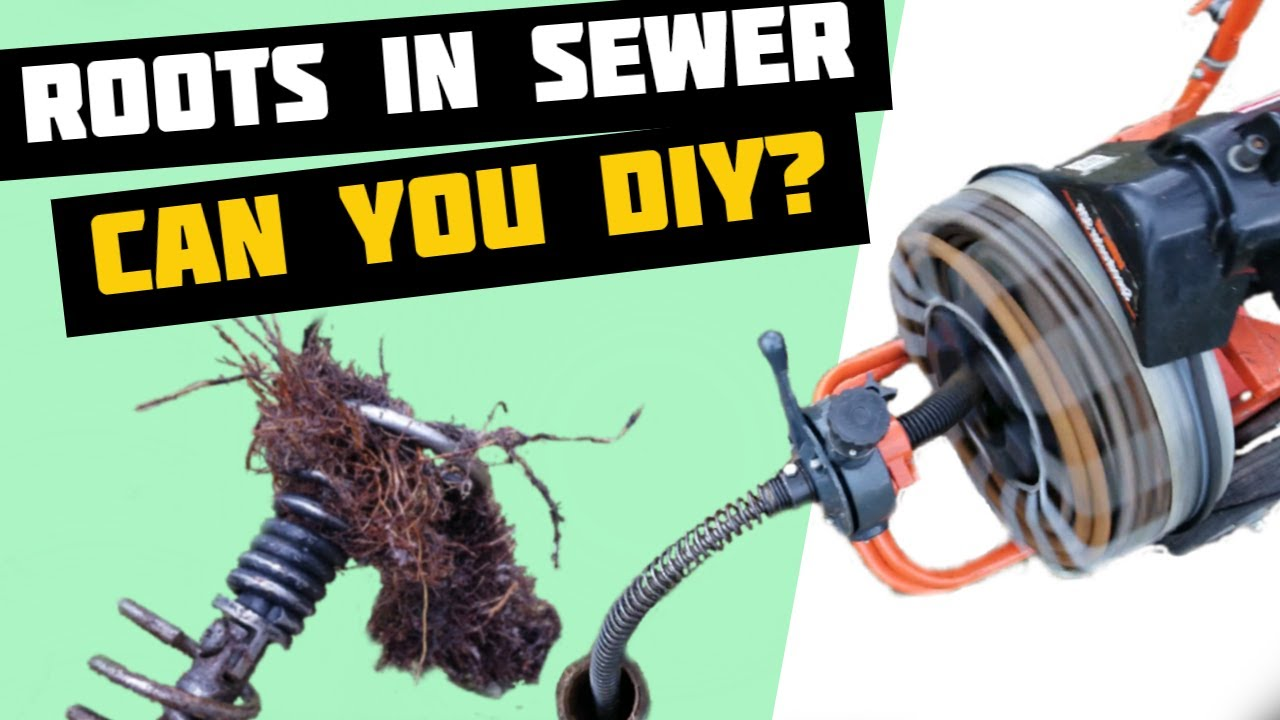 How to Remove Tree Roots from Sewer Pipe - How to Unclog Main Drain Line - Sewer Snake - Rootx