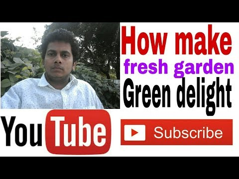 How to make ?? garden green delight salad|| Make a fresh dish !! Latest update 2018